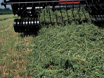 Case IH Forage Harvesters & Blowers